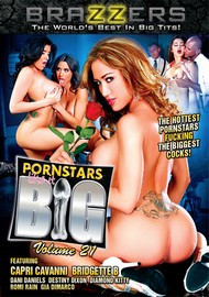 Pornstars Like It Big #21 – Brazzers